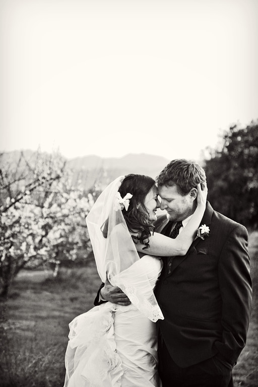 IMAGE: http://jwilsonphotography.smugmug.com/Weddings/Colette-and-Kurt/i-64cHsLJ/0/XL/325-XL.jpg